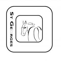 Fautras option logo personnalisé